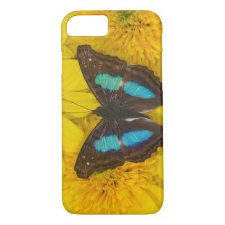 Coque iPhone 7 Photographie de Sammamish Washington de papillon