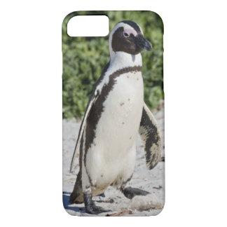 Coque iPhone 7 Pingouin africain, autrefois connu sous le nom