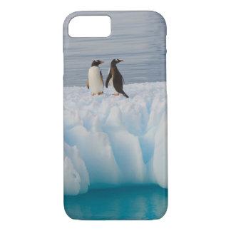Coque iPhone 7 pingouin de gentoo, Pygoscelis Papouasie, sur la