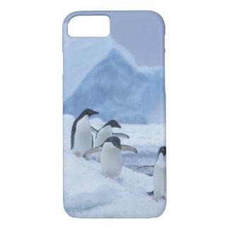 Coque iPhone 7 Pingouins d'Adelie (adeliae de Pygoscelis) sur la