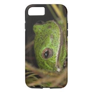 Coque iPhone 7 Plan rapproché d'un treefrog d'écorcement sur le