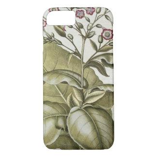 """Coque iPhone 7 Plante de tabac, du """"Hortus Eystettensis"""" par B"""