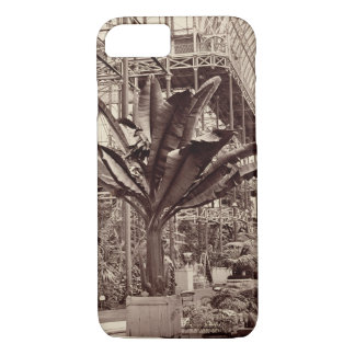Coque iPhone 7 Plantes tropicales dans la salle égyptienne, Pala