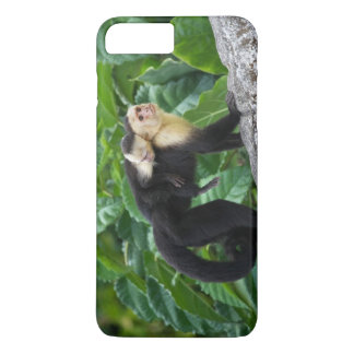 Coque iPhone 7 Plus Bébé de transport de singe adulte de capucin sur