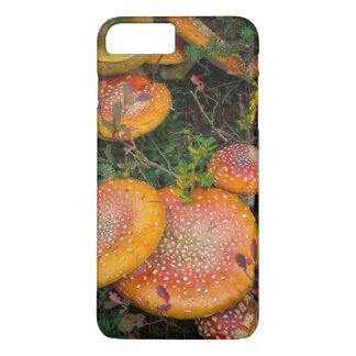 Coque iPhone 7 Plus Champignons d'agaric de mouche au lac Mowich