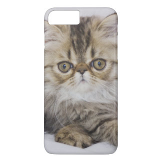 Coque iPhone 7 Plus Chat persan, catus de Felis, chat tigré de Brown,