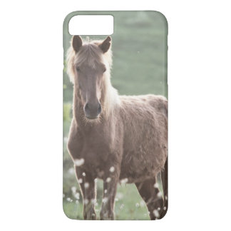 Coque iPhone 7 Plus Chevaux