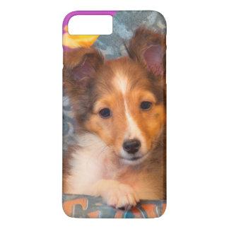 Coque iPhone 7 Plus Chiot de chien de berger de Shetland dans une