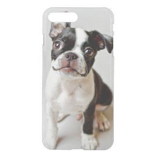 Coque iPhone 7 Plus Chiot de chien de Boston Terrier