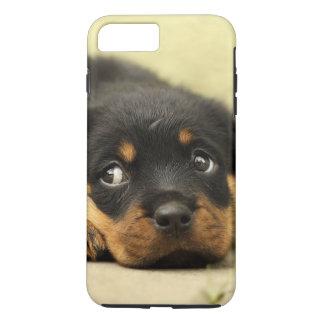 Coque iPhone 7 Plus Chiot de rottweiler curieux