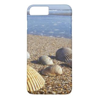 Coque iPhone 7 Plus Coquilles côtières des Etats-Unis, la Floride, mer