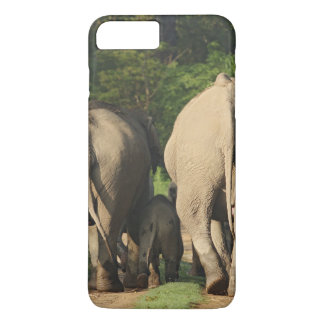 Coque iPhone 7 Plus Éléphants d'Asie sur la voie de jungle, Corbett