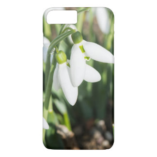 Coque iPhone 7 Plus Fleurs de perce-neiges