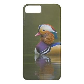 Coque iPhone 7 Plus Galericulata sauvage d'Aix de canard de mandarine)