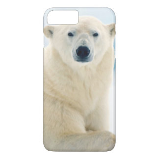 Coque iPhone 7 Plus Grand verrat adulte d'ours blanc sur la glace