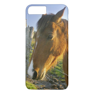 Coque iPhone 7 Plus Haast, Nouvelle Zélande. Un ranch de cheval dans