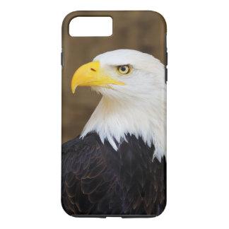 Coque iPhone 7 Plus Haliaeetus américain Leucocephalus d'Eagle chauve