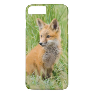 Coque iPhone 7 Plus Kit de Fox rouge dans l'herbe près du repaire