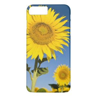 Coque iPhone 7 Plus La France, Provence, Valensole. Support de