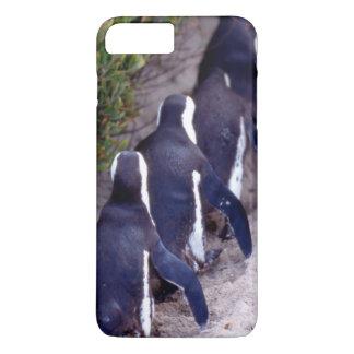 Coque iPhone 7 Plus L'Afrique du Sud, ville de Simons. Suiviste.