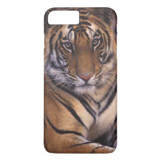 Coque iPhone 7 Plus L'Asie, Inde, parc national de Bandhavgarth,