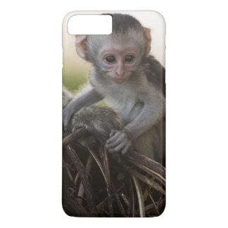 Coque iPhone 7 Plus Le Kenya, réservation de jeu de Samburu. Singe de