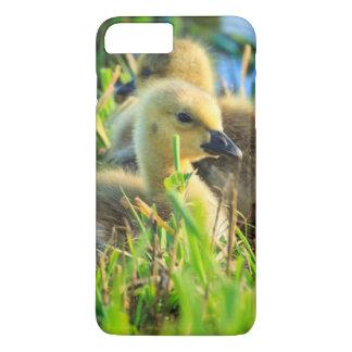Coque iPhone 7 Plus Les Etats-Unis, Orégon, faune nationale 9 de