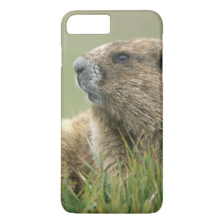 Coque iPhone 7 Plus Les Etats-Unis, Washington, NP olympique, Marmot
