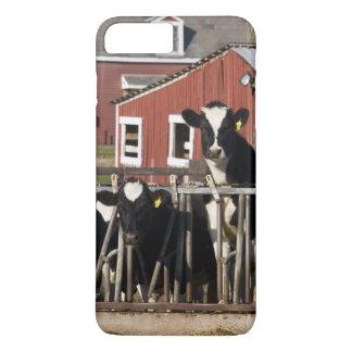 Coque iPhone 7 Plus Les Holsteins à la ferme marécageuse de pré dans