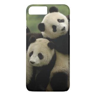 Coque iPhone 7 Plus Melanoleuca d'Ailuropoda de bébés de panda géant)