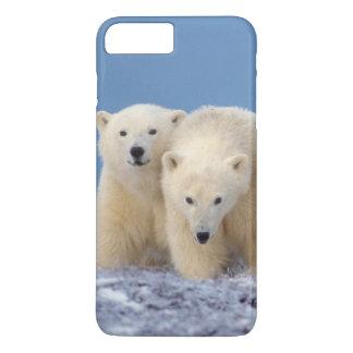 Coque iPhone 7 Plus ours blanc, maritimus d'Ursus, truie avec des