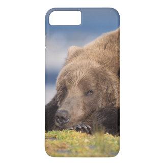 Coque iPhone 7 Plus ours brun, arctos d'Ursus, ours gris, Ursus 8
