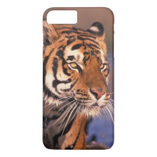 Coque iPhone 7 Plus Panthera le Tigre de tigre de l'Asie, de l'Inde,