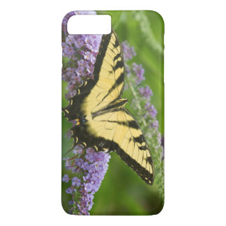 Coque iPhone 7 Plus Papillon oriental de machaon de tigre