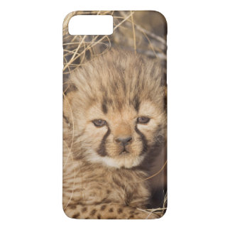 Coque iPhone 7 Plus petit animal masculin âgé de 19 jours. La Namibie