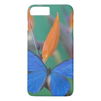 Coque iPhone 7 Plus Photographie de Sammamish Washington de papillon