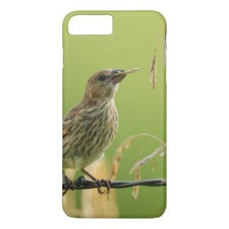 Coque iPhone 7 Plus Pinson mangeant des graines d'une herbe sauvage