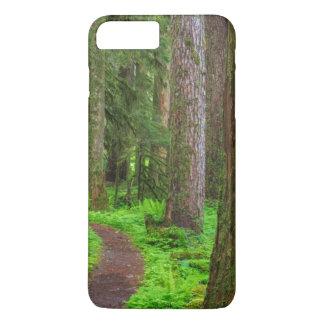 Coque iPhone 7 Plus Pittoresque de la forêt de peuplement vieux