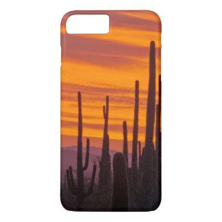 Coque iPhone 7 Plus Saguaro, coucher du soleil, parc national de