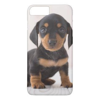 Coque iPhone 7 Plus Séance miniature de teckel