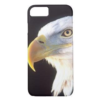 Coque iPhone 7 Portrait d'Eagle chauve, leucocephalus de