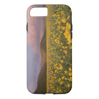 Coque iPhone 7 Pré spectaculaire de fleur sauvage au lever de