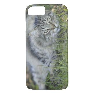 Coque iPhone 7 Ragondin du Maine s'étendant dans l'herbe, la