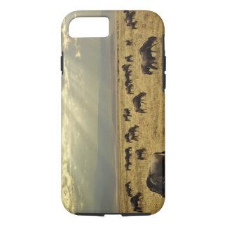 Coque iPhone 7 Rayons de soleil et gnou, taurinus de Connochaetes