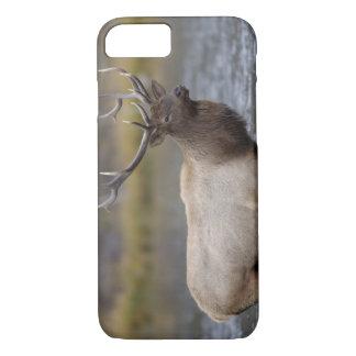 Coque iPhone 7 rivière de croisement d'élans de taureau,