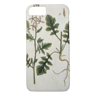 "Coque iPhone 7 Rocket, plaquent 242 ""d'un de fines herbes"