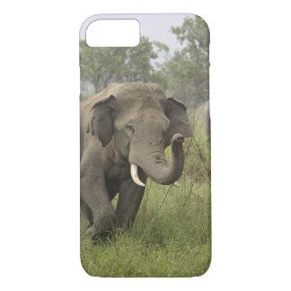 Coque iPhone 7 Salutation éléphant indien/asiatique, Corbett