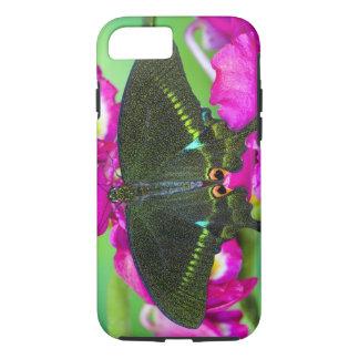 Coque iPhone 7 Sammamish, borboleta De tropical Washington