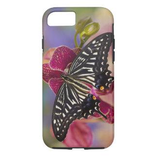 Coque iPhone 7 Sammamish, papillon tropical 3 de Washington