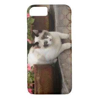 Coque iPhone 7 San Miguel de Allende, Mexique. Repos de chaton